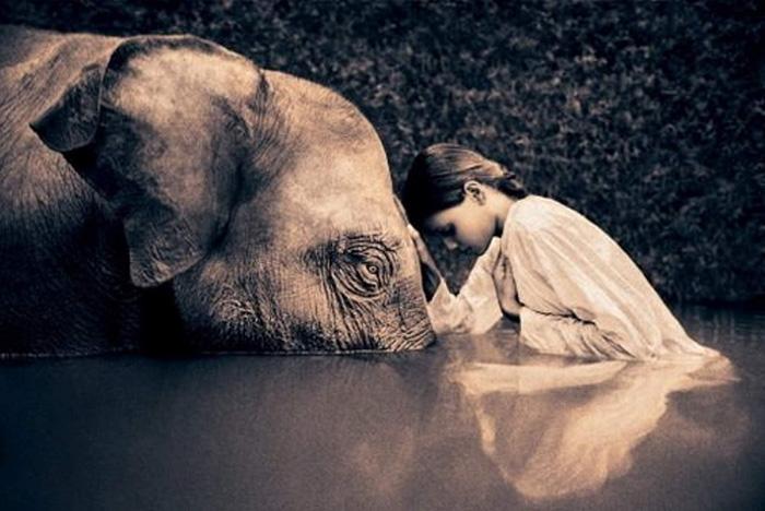 Are we compassionate?